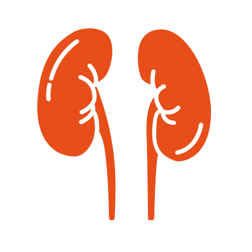 Renal Care